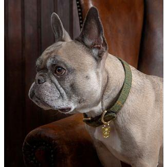 Digby & Fox Tweed Dog Collar