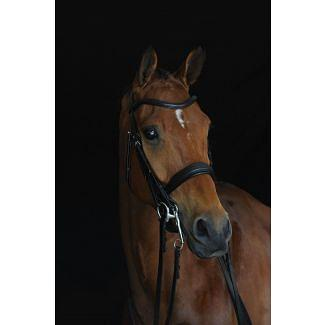 Collegiate Mono Crown Padded Raised Weymouth Bridle Black