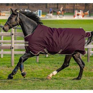 Horseware Amigo Hero Ripstop Lite 100g Turnout Rug Fig/Navy & Tan