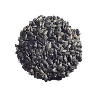 Bamfords Black Sunflower Seeds 15kg | Chelford Farm Supplies