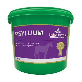 Global Herbs Psyllium 1kg - Chelford Farm Supplies