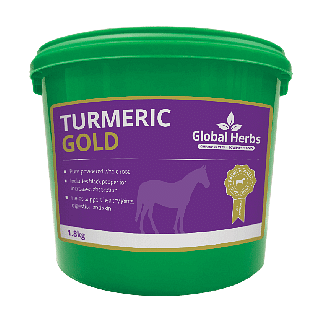 Global Herbs Turmeric Gold 1.8kg - Chelford Farm Supplies