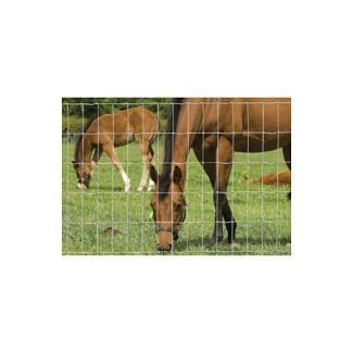 Hampton NET 13/122/5 Horse Stock Fencing 50m | Chelford Farm Supplies