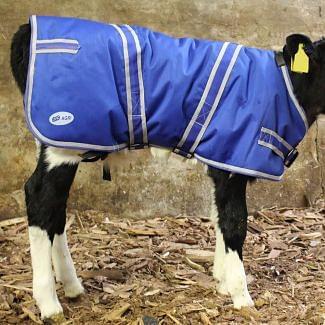 JFC Agri Calf Jacket | Chelford Farm Supplies