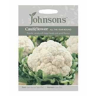 Johnsons Cauliflower All The Year Round Seeds