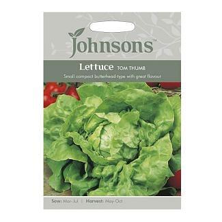 Johnsons Lettuce Tom Thumb Seeds