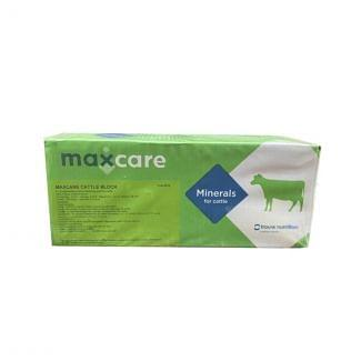Maxcare Cattle Block with Copper (2x10kg) | Chelford Farm Supplies