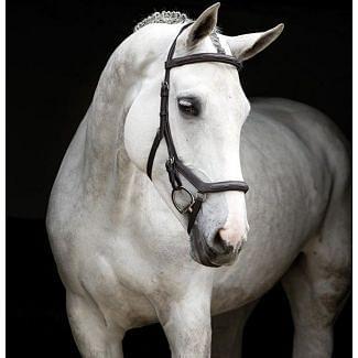 Horseware Rambo Micklem Deluxe Competition Bridle Dark Havana