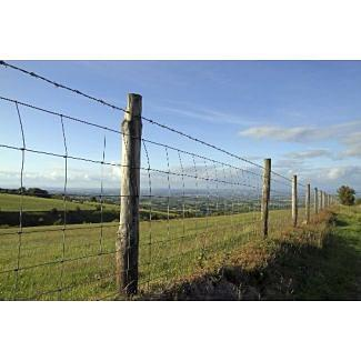 C8/80/15 Green Stock Fencing 50m