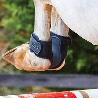 WeatherBeeta Dynamic Fetlock Boots  Chelford Farm Supplies